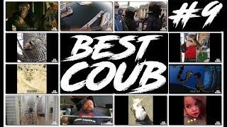 Best Coub # 9 / Best funny compilation 2018 / Лучшие приколы за июнь 2018