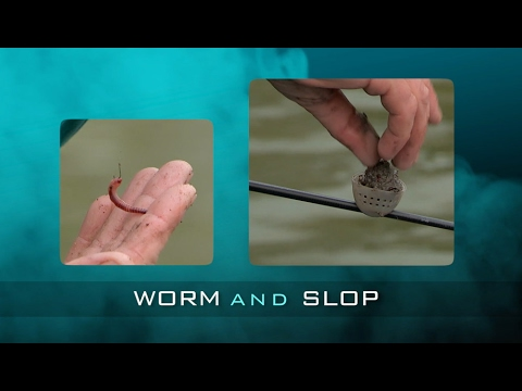 Bite-Size Tips: Worm And Slop With Carl Eland