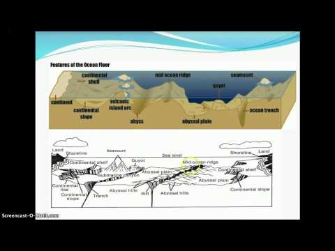 Unit 2 Marine Geology Lectures 10-11
