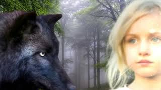 Волк отомстил охотнику . До слёз.