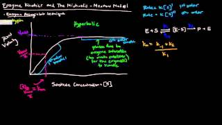 Enzymes (Part 2 of 5) - Enzyme Kinetics and The Michaelis Menten Model