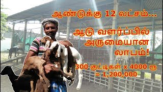 Video 12 Lakhs Per Year - Profitable Goat Farm Business - How to Start, Plans, Ideas in Tamil download MP3, 3GP, MP4, WEBM, AVI, FLV Agustus 2018