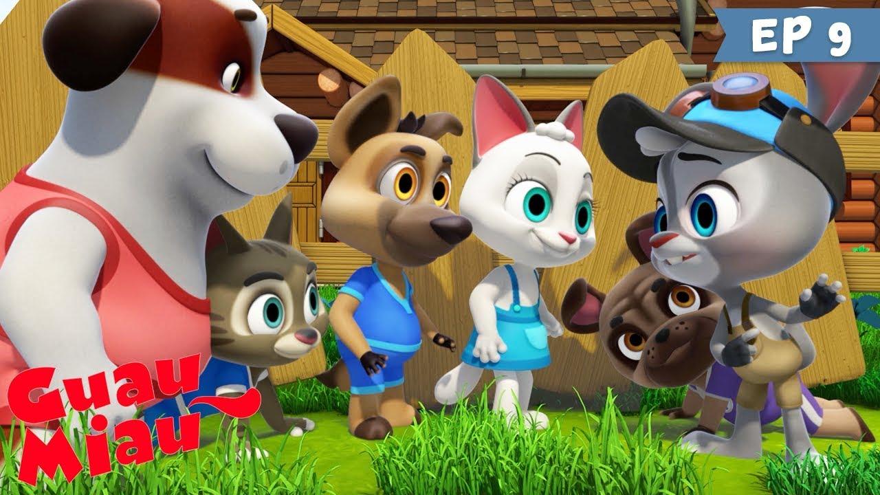 Guau Miau Ayudantes Secretos Dibujos Animados Infantiles De Perros Y Gatos