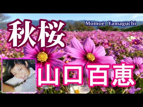 山口百恵・秋桜(コスモス) 歌詞付き!【4K】高音質CD音源