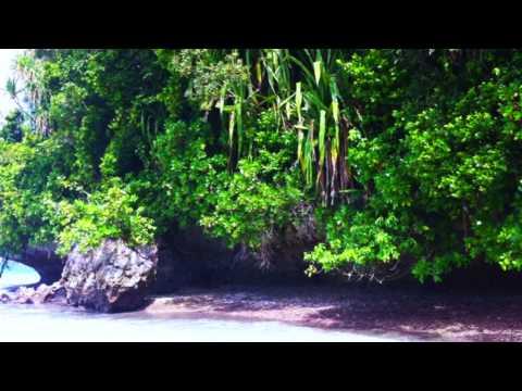Palau 2015   Parte I