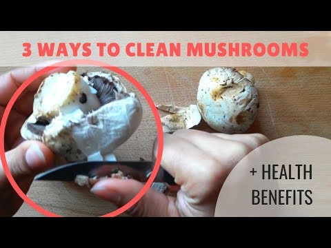 How to Clean Mushrooms | 3 Totally Different Ways that Might Surprise you!!!