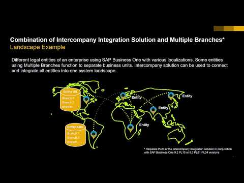 SAP Business One Intercompany And MultiBranch