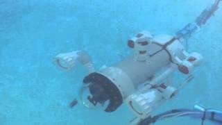 SeaBot - Underwater ROV