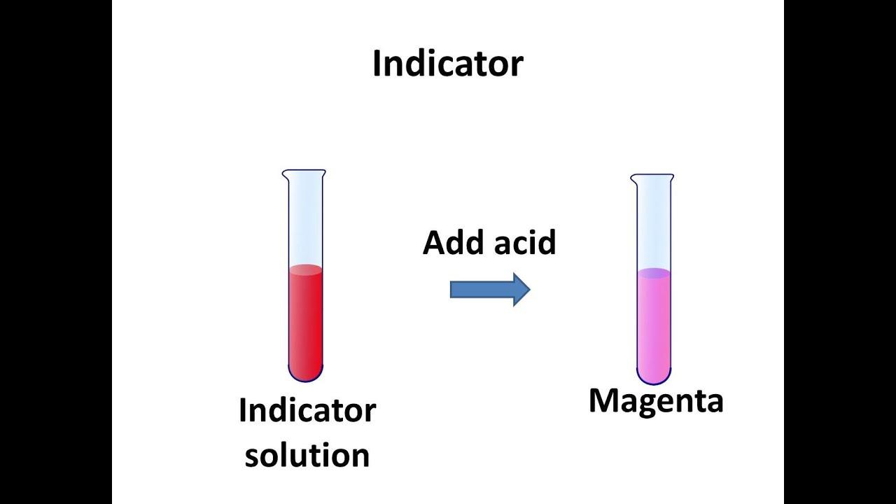 acid base indicator Looking for online definition of acid-base indicator in the medical dictionary acid-base indicator explanation free what is acid-base indicator meaning of acid-base indicator medical term what does acid-base indicator mean.