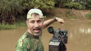 Brasil Secreto | Ep03 | Uma Odisseia no Pantanal