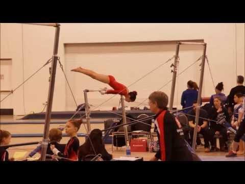 igi gymnastics meet 2015