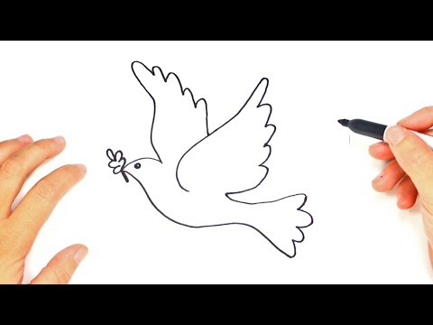 How To Draw The Dove Of Peace | Cute Drawings