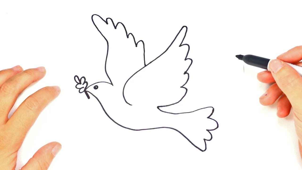How to draw The Dove of Peace   Cute Drawings