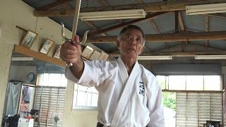 65歳の沖縄空手家の武器術が凄すぎる Okinawan Karate, Bo-jutsu( Isshin-ryu)
