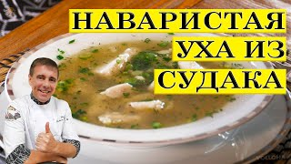 Наваристая уха из судака. Pork perch