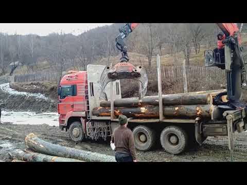 MAN TGA-incarcare lemne