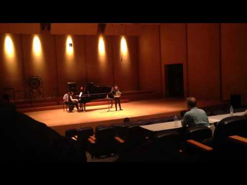 Mozart Horn Concerto No.2