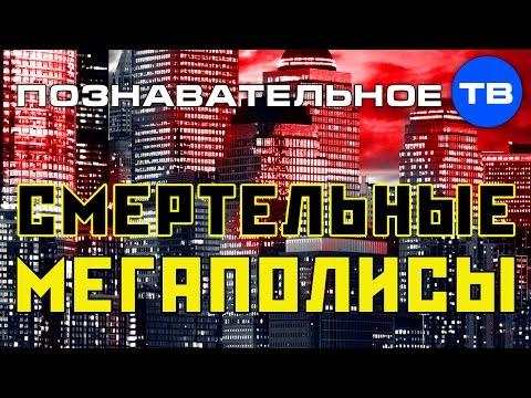 Картинки по запросу Смертельные мегаполисы (Познавательное ТВ, Михаил Величко)