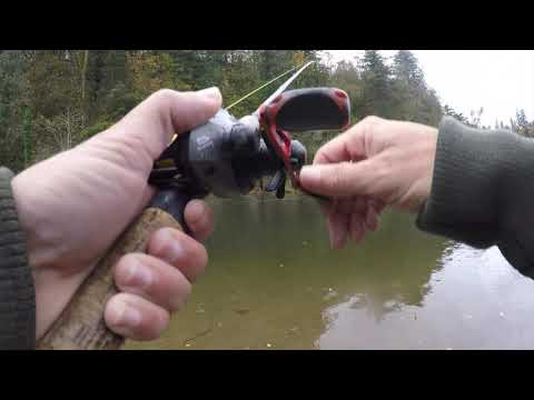 Chinook & Coho Salmon Fishing   MULTIPLE Fish On Spinners!!   Sandy River Fishing