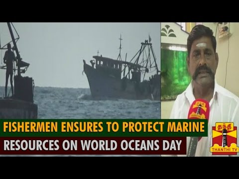 Fishermen Ensures To Protect Marine Resources On World Oceans Day(June 8th) - Thanthi TV