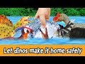 [EN] Let dinos make it home safely!! kids education, let's learn dinosaur's name, collectaㅣCoCosToy