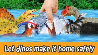 [EN] Let dinos make it home safely!! kids english, dinosaurs movies, collectaㅣCoCosToy