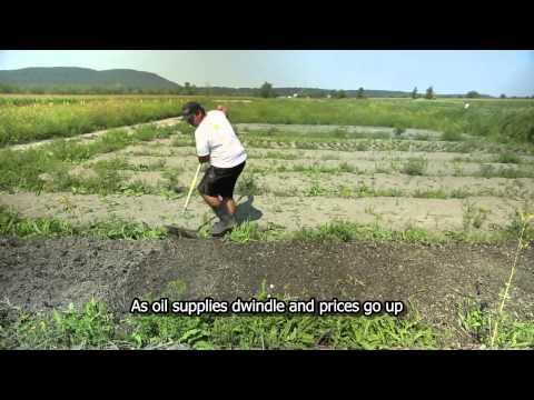 Les Jardins de Marie-Bio, a small-scale, organic farming incubator