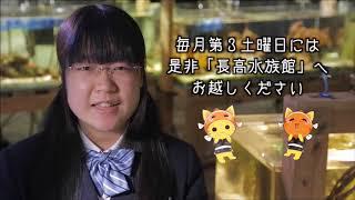 愛媛県立長浜高等学校【全国募集】PR動画