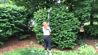 Diane's New Hedge Trimmer