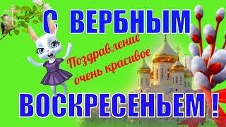Вербное Воскресение красивое поздравление и пожелание в день вербного воскресенья