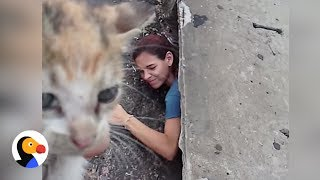Woman Climbs into Sewer To Save Tiny Kitten | The Dodo