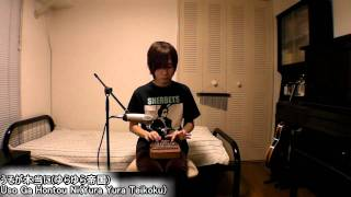 """Uso Ga Hontou Ni"" (by Yura Yura Teikoku) on chromatic kalimba.夢弦..."
