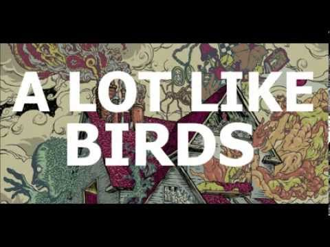 A Lot Like Birds Lyrics - elyricsworld.com