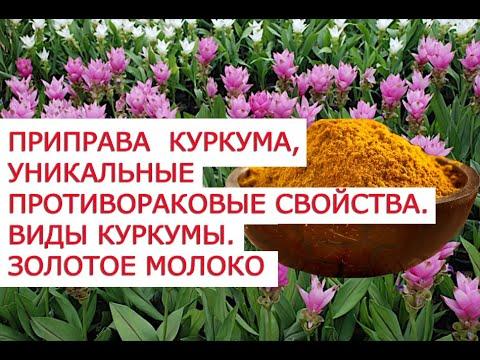 Татьяна Чернецкая