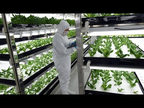 Conversation: The Future of Automated Agriculture