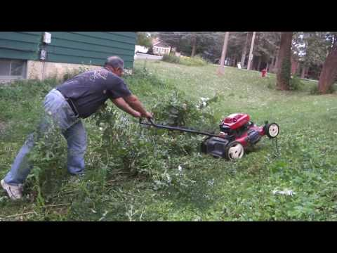 Greg Zanis Got A Free Toro Lawn Mower From Craigslist and Cutting The Long Greens