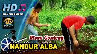 Single Terbaru -  Nandur Alba Risno Gonteng Hasil Kayu