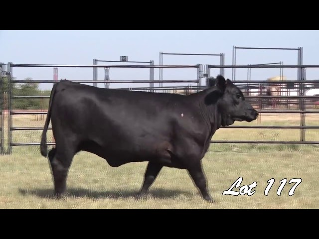 Pollard Farms Lot 117