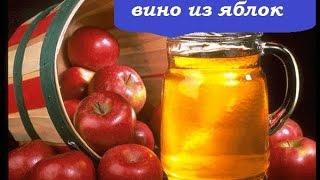 видео Вино из яблок в домашних условиях