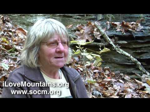 Eagan, TN: Digging wild herbs in the Appalachian mountains