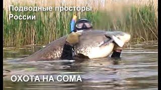 Подводная охота на сома с Николаем Шиловым Подводные просторы России