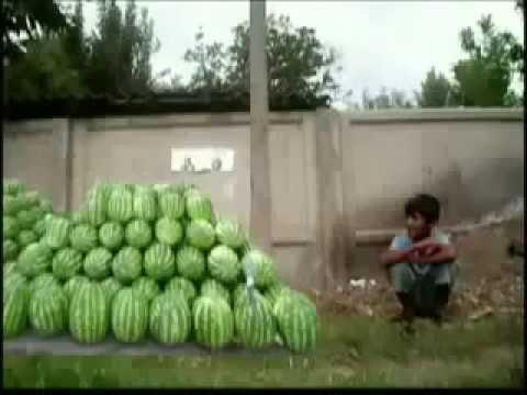 - Таджикское видео
