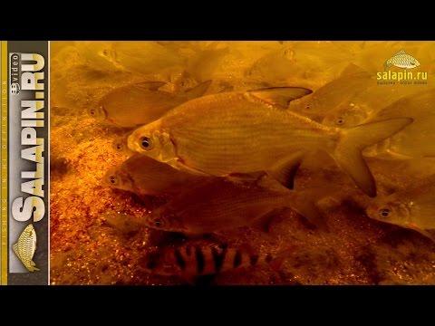 как правильно привязать грузило на спиннинг для рыбалки на течении