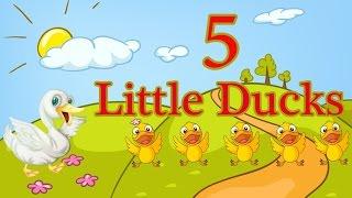 Five Little Ducks   Nhạc Thiếu Nhi Chọn Lọc   Học Tiếng Anh Qua Bài hát