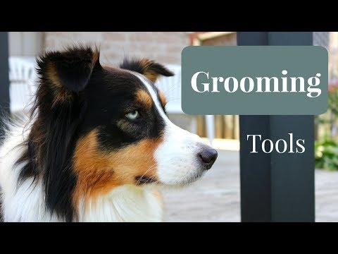 Essential Grooming Tools for Australian Shepherds
