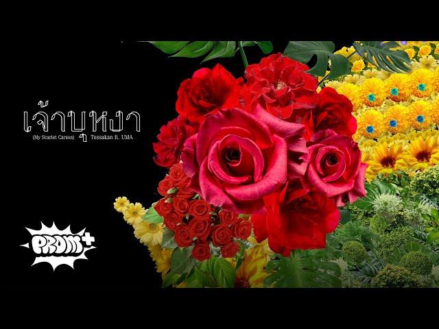 TOSSAKAN - เจ้าบุหงา Feat. UMA [Teaser 3/9]