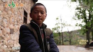 農村10歲男孩,很小母親離家出走,從未有過母愛,孤僻不說話! 【大山面貌】 thumbnail