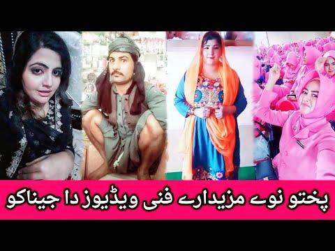 Ticket Me Kre Laila Jazz Ki Ba Darzam Pashto Funny Songs In Tik Tok
