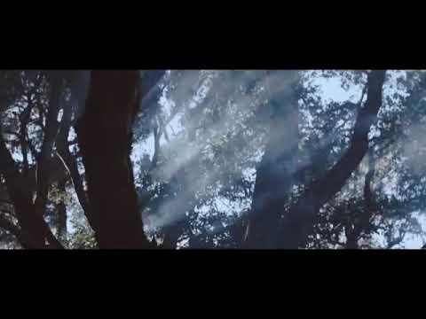 Ava max - Salt (official video)