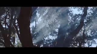 Download Ava max - Salt (official video)